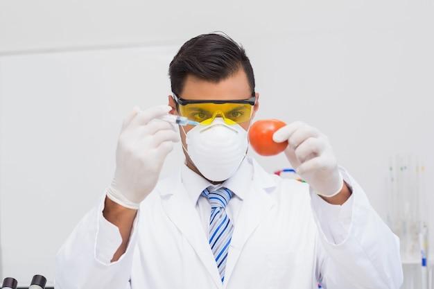 Wissenschaftler, der einspritzung zur tomate tut