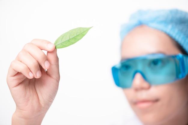 Wissenschaftler, die probe der anlage arbeiten im genetik-labor betrachten
