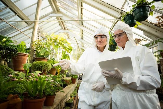 Wissenschaftlerinnen untersuchen pflanzen