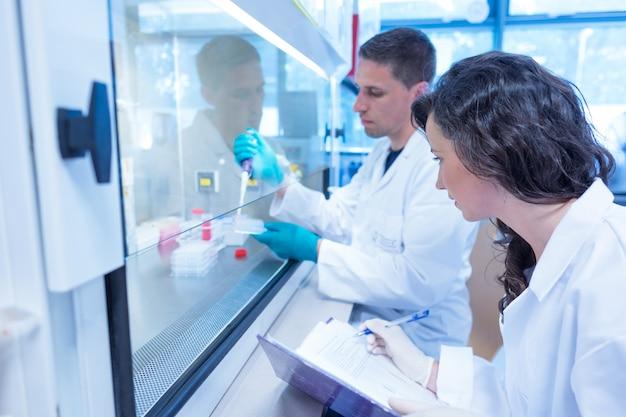 Wissenschaftsstudenten, die pipette im labor verwenden