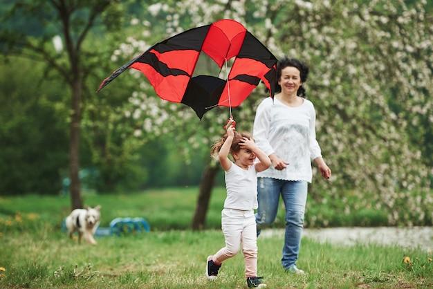 Wochenendaktivitäten. positives weibliches kind und großmutter, die mit rotem und schwarzem drachen in den händen draußen laufen