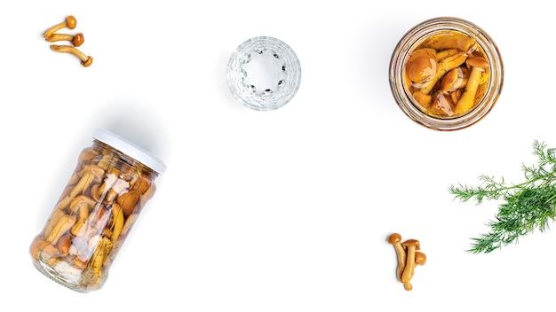 Wodka, gläser und gurken auf einem weißen hintergrund