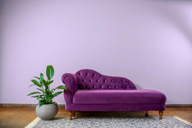Wohnzimmer Rustikales Gelbes Wandinterieur Mit Einer Lila Recamie Couch Premium Foto