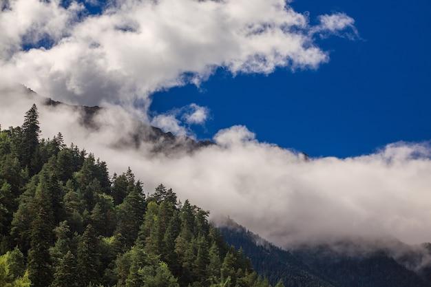 Wolken über den gipfeln der felsigen berge, die mit bäumen bewachsen sind. fotografiert im kaukasus, russland.
