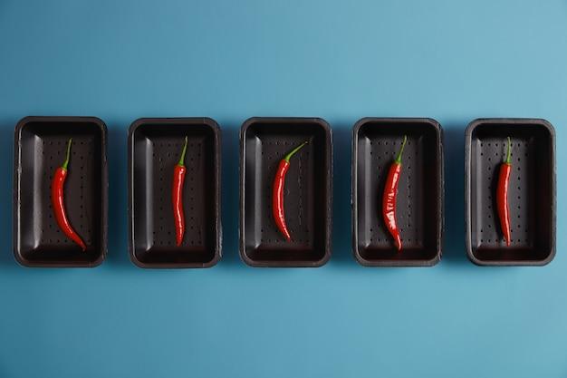 Würzige zutat zu ihren gerichten. dünner roter chilipfeffer auf schwarzen schalen, isoliert auf blauem hintergrund, verpackt im supermarkt, kann frisch oder trocken gegessen werden, um chilipulver herzustellen und grillgerichte zu würzen