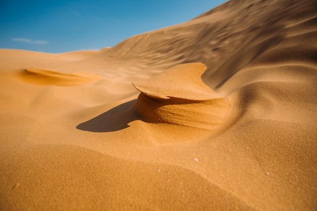 Wüste mit sanddünen an einem klaren sonnigen tag. wüstenlandschaft.