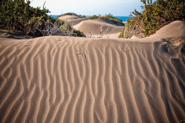 Wüsten dünen mit wellen