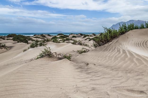 Wüstenlandschaft mit dem ozean und den bergen