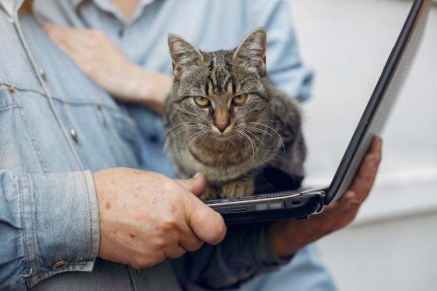 Wütende katze auf einem laptop