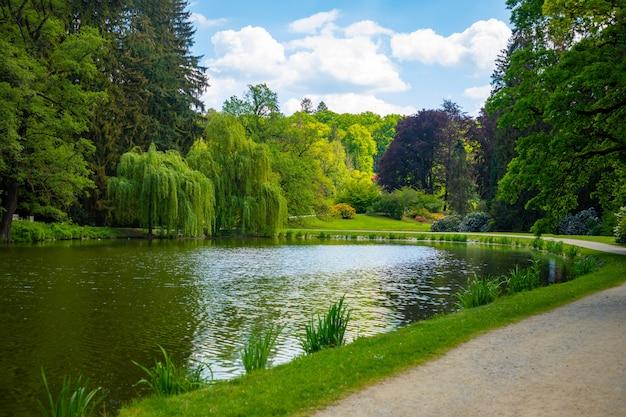 Wunderbare natur am frühlingstag im pruhonice park nahe prag, tschechische republik
