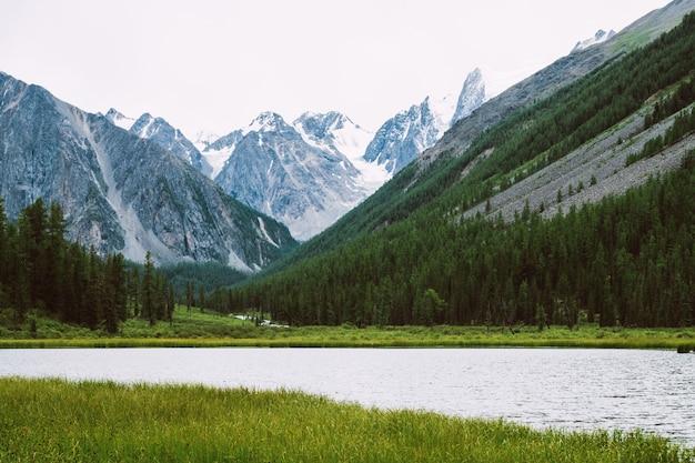 Wunderbare schneebedeckte berge hinter einem kleinen bergsee mit glänzendem wasser inmitten üppiger vegetation. creek fließt vom gletscher. weißer klarer schnee auf kamm. erstaunliche atmosphärische landschaft der hochlandnatur.