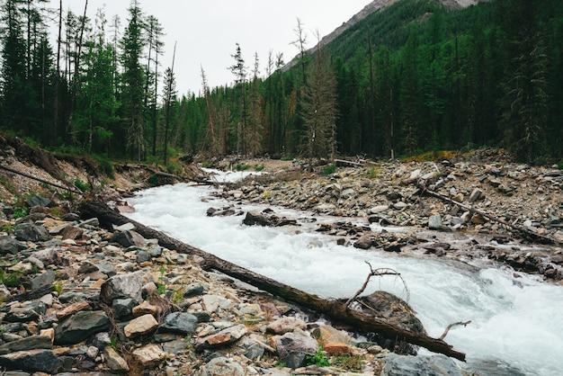 Wunderbarer schneller wasserstrom vom gletscher im wilden gebirgsbach mit steinen