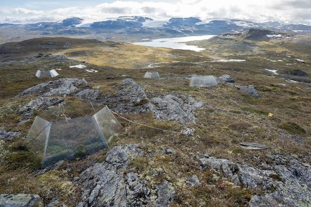 Wunderschöne landschaft mit vielen felsformationen und einem zelt in finse, norwegen