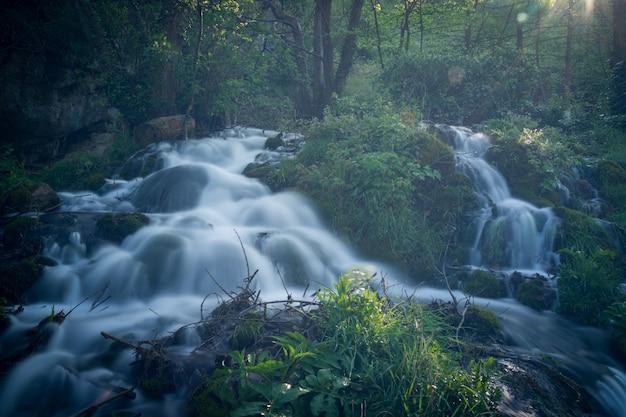 Wunderschöne natur mit fließendem wasser