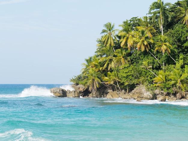Wunderschöner blick auf das tropische inselparadies mit meer und palmen. dominikanische republik.