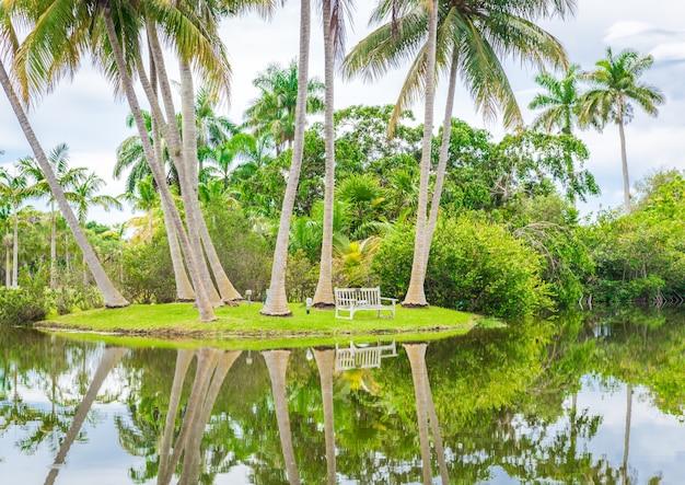 Wunderschöner park mit tropischer natur und palmen