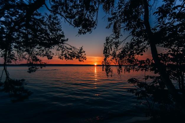 Wunderschöner sonnenuntergang am meer mit sonne und blauer himmel durch zweige der bäume am strand