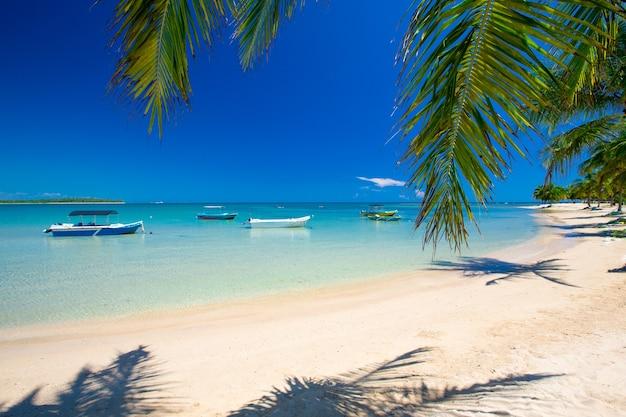 Wunderschöner strand. blick auf den schönen tropischen strand mit palmen herum. ferien- und urlaubskonzept.