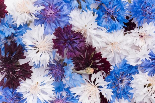 Wunderschönes arrangement von blumentapeten