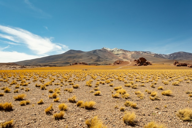 Wunderschönes bild von faszinierenden bergen unter dem azurblauen himmel