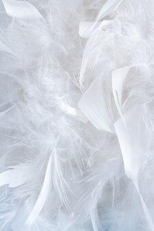 Wunderschönes natürliches muster aus vielen großen und kleinen weißen federn aus federboa.