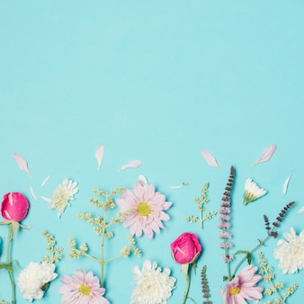 Wundervolle rosafarbene, weiße und violette blüten