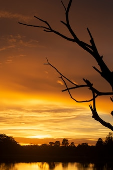 Wundervoller sonnenuntergang oder sonnenaufgang.