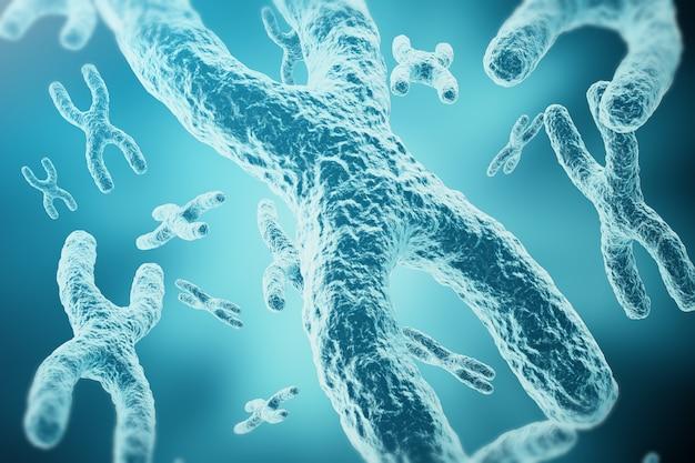 Xy-chromosomen als konzept für die gentherapie der medizinischen biologie oder der genforschung in der mikrobiologie. 3d-rendering