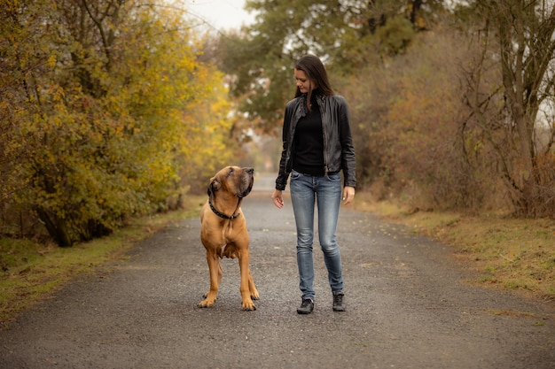 Yong-frau mit großer hundefila brasileiro zucht im herbstpark