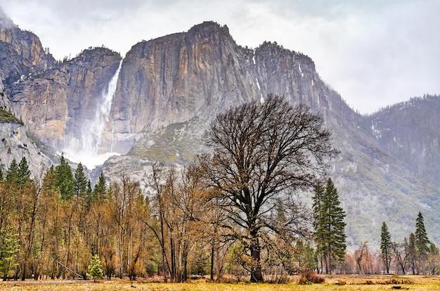 Yosemite falls, der höchste wasserfall im yosemite nationalpark, kalifornien