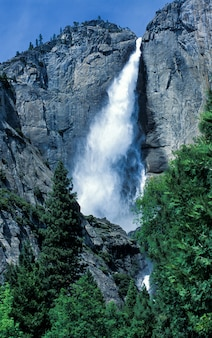Yosemite falls; yosemite nationalpark