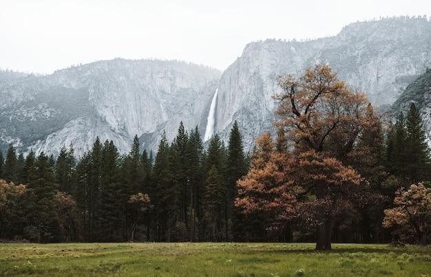 Yosemite-wasserfälle im yosemite-nationalpark
