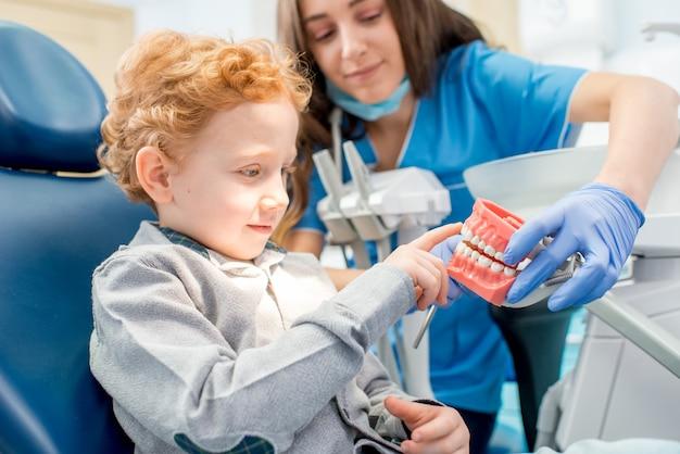 Zahnärztin, die den künstlichen kiefer des jungen in der zahnarztpraxis zeigt