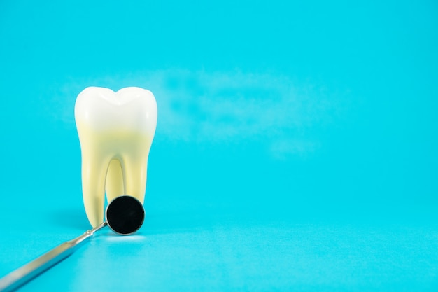 Zahnärztliches werkzeug und zahnanatomie