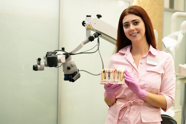 Zahnarzt demonstriert das layout von implantaten. junger weiblicher zahnarzt an ihrem arbeitsplatz, darstellung der arbeit. kranker zahn, karies, pulpitis.