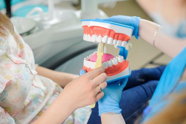 Zahnarzt, der dem patienten zahnmedizinisches kiefermodell in der klinik des zahnarztes zeigt
