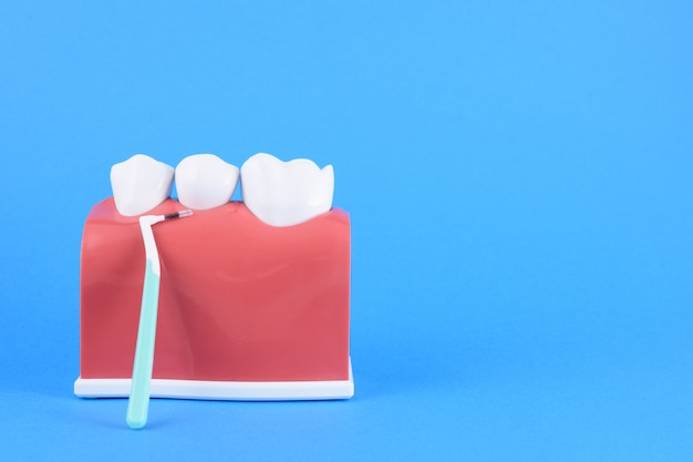 Zahnarzt des falschen mundes im blau