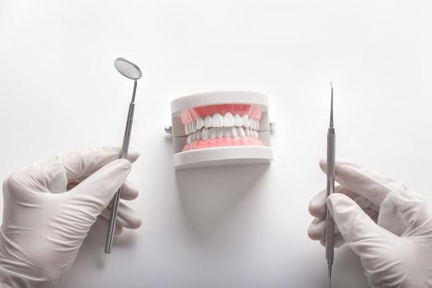 Zahnarzt mit künstlichem kiefer und zahnärztlichen werkzeugen auf weiß