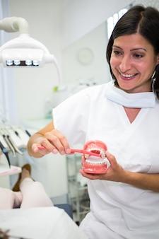 Zahnarzt zeigt dem patienten, wie man zähne putzt
