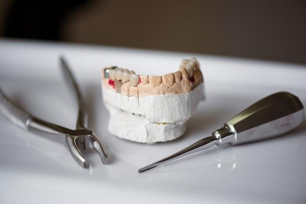 Zahnarztwerkzeug und künstlicher kiefer. zahnarztklinik.