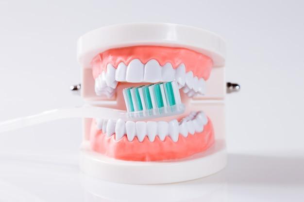 Zahnmedizinische ausrüstung des zahnmedizinischen konzeptes bearbeitet zahnpflege