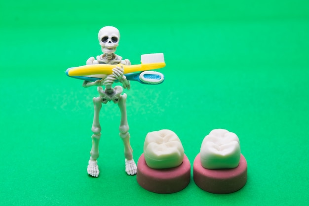 Zahnmodelle verschiedener menschlicher kiefer mit skelett, halloween-zahnkonzept.