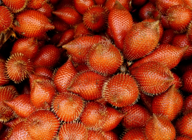 Zalacca frucht