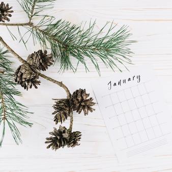 Zapfen mit januar-kalender auf dem tisch