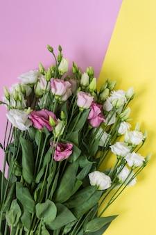 Zarte eustoma-blüten auf gelbem und rosa hintergrund