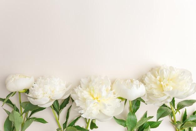 Zarte frühlingsblumen auf beige hintergrund