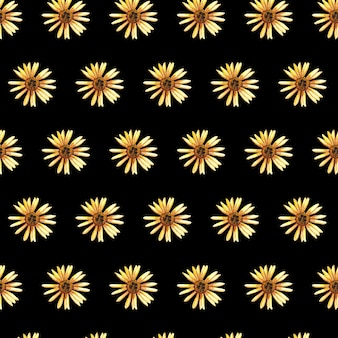 Zarte gepresste florale aquarelle, nahtlose muster und getrocknete blumenarrangements sind auf schwarzen platziert