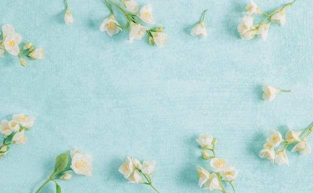 Zarte jasminblüten auf blauem grund