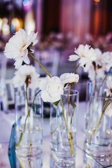 Zarte pfingstrosenblüten in glasvasen
