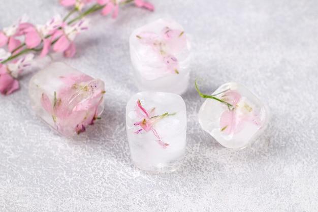 Zarte rosa blüten eingefroren in eiswürfeln auf hellgrauem hintergrund.